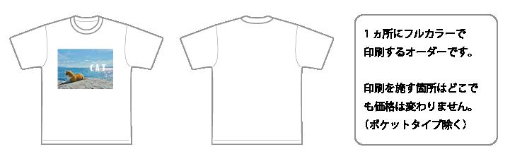 片面インクジェットフルカラーイメージ